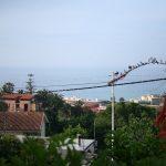 villa foto 005_renamed_18781